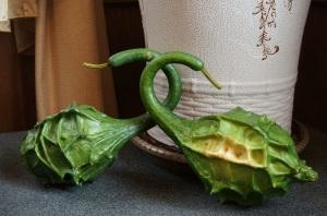 清境農場民宿-茶几上的天鵝瓜