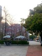 台中的一天-台中街道