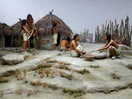 生命循環之生老病死-定居的團體