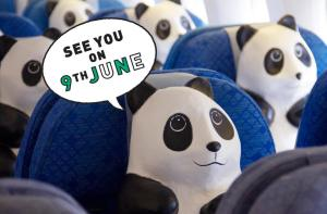 PMQ 元創方「1600熊貓遊 香港·創意X 保育」巡迴展最新宣傳 資料來源: 1600熊貓遊專頁